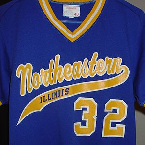 Northeastern Illinois University - NEIU Baseball Jersey