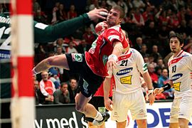 NOR - AUT (03) - 2010 European Men's Handball Championship.jpg