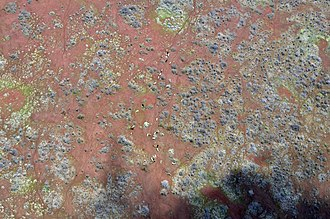 Marsabit - Aerial view of area on the outskirts of Marsabit.