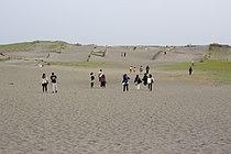 Nakatajima sand dunes.jpg