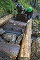 National Public Lands Day 2014 at Mount Rainier National Park (052), Narada.jpg