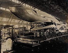 Natural History exhibit at the 1904 World's Fair, St. Louis, featuring a blue whale model and a dinosaur skeleton