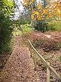 New walkway across seasonal stream - geograph.org.uk - 1087591.jpg