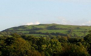 Pallasgreen - Nicker Hill, the mythological home of the ancient Irish Goddess of Love, and highest of the local group of volcanic hills that extends into Kilteely-Dromkeen