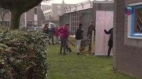 File:Nijmegen viert Boomfeestdag.webm
