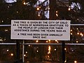 Notice on Christmas Tree in Trafalgar Square, London W1 - geograph.org.uk - 1101378.jpg