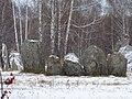 Novosibirsky District, Novosibirsk Oblast, Russia - panoramio (5).jpg