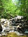 Nulhegan Basin Division, Silvio O. Conte National Wildlife Refuge. Credit- Tom LaPointe-USFWS (4879498706).jpg