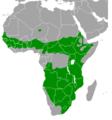 Numida meleagris range map.png