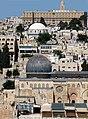 Old Jerusalem black and white domes P1060057.JPG