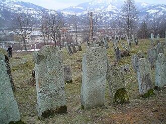 Dubove, Tiachiv Raion - Dubove's old Jewish cemetery.  Prior to World War II, the village had a sizable Jewish community.