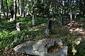 Old cemetery in Küstrin-Kietz 298.JPG