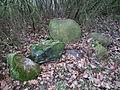 Old ev. cemetery, Poznan, Krakowiakow i Gorali Street, Morasko (11).JPG