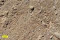 Ooids Carmel Formation Jurassic.jpg