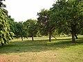 Orchard, Tenbury - geograph.org.uk - 213752.jpg