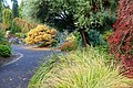 Oregon Garden - Silverton, Oregon - DSC00270.jpg