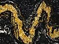 Orinoco Granite (garnetiferous convoluted gneiss) 9 (33856990692).jpg