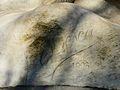 Périgueux souvenir signature Desca.JPG