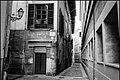 Palma Alley (256822415).jpeg