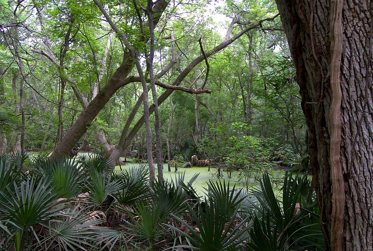 City Of Palmetto Florida Property Appraiser