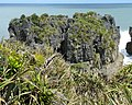 Pancake Rocks, West Coast Region, New Zealand (8).JPG