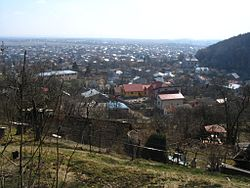 View of Vynnyky.