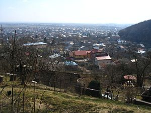 Vynnyky - View of Vynnyky.