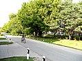 Park oko Begeja.JPG