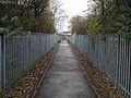 Path (2086230341).jpg