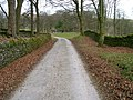 Path between Leagate and Bannisdale High Bridge - geograph.org.uk - 1219660.jpg
