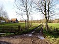 Path junction by Burnt House, Water End, Ashdon - geograph.org.uk - 108679.jpg