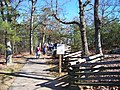 Path on Pilot Mountain State Park - panoramio.jpg