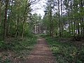 Path through Harmergreen Wood - geograph.org.uk - 404039.jpg
