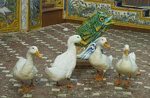 Patos.jpg