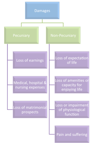 Tort law in India - Heads of claims under personal injury