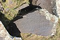 Petroglyphs from Ukhtasar 15092019 (307).jpg