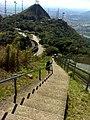 Pico Jaragua (vista da torre das antenas de TV) - panoramio.jpg