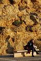 PikiWiki Israel 38988 Geography of Israel.JPG