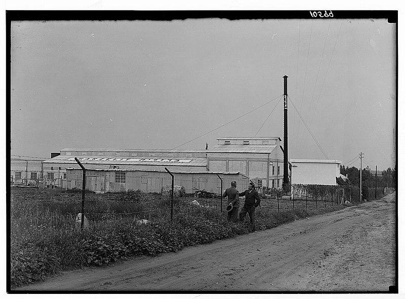 המפעל לחוטי תיל ולמסמרים ברזלית
