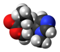 Pilocarpine molecule spacefill.png