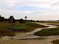 Pinckney Island National Wildlife Refuge (5957932399).jpg