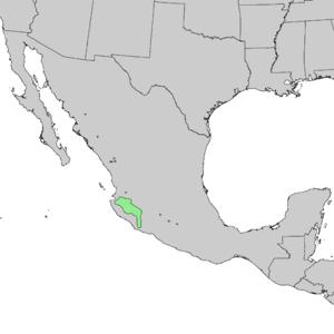 Pinus douglasiana - Image: Pinus gordoniana range map 1