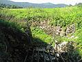 Planinsko polje (SW Slovenia) - ponor Unice (2).jpg