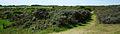Platier d'Oye vues panoramiques (10).jpg