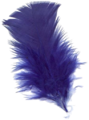 Pluma-azul-1R.png