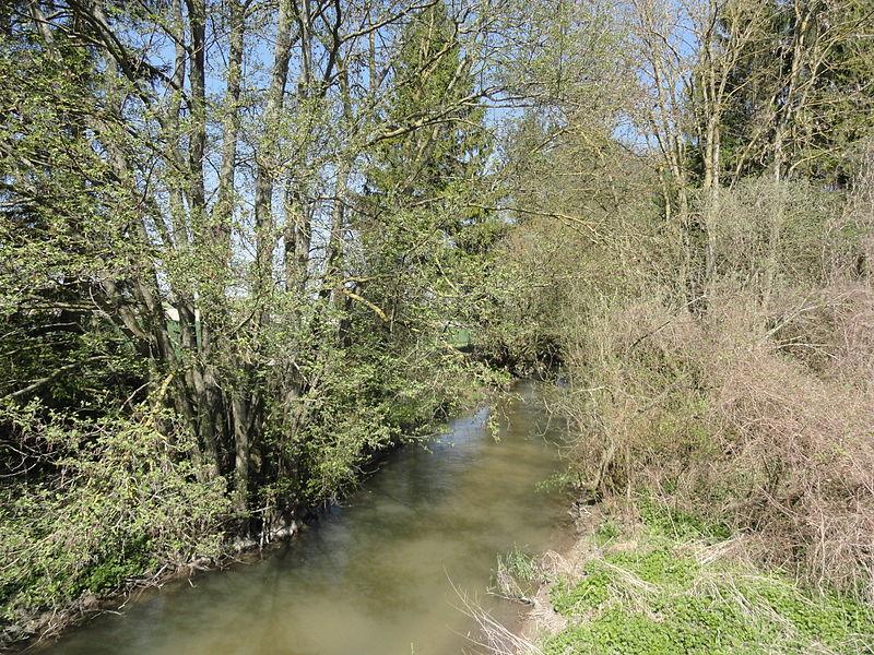 La Berle, passant au nord du village de Pocancy (France).