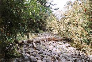 Łysa Góra - Remains of the pagan wall.