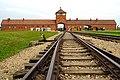 Poland-01413 - Birkenau (30951727943).jpg