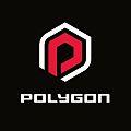 Polygon Bikes logo.jpg