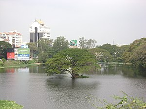 Chetput Lake - Image: Pond at Chetput 1